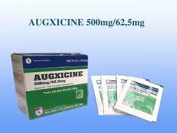 Augxicine 500mg/62,5mg