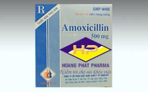 AMOXICILIN 500