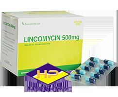 LINCOMYCIN 500MG