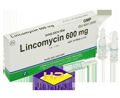 LINCOMYCIN 600MG/2ML