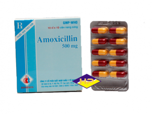 AMOXICILIN 500 Domesco