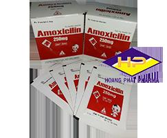 AMOXICILIN 250MG