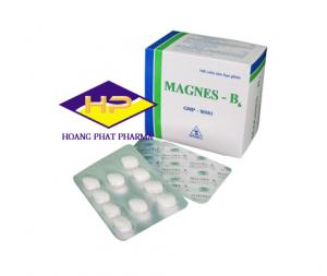 Magnes – B6